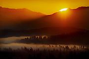 Sunrise,Cascades,fog,Seattle,trees,forest,orange