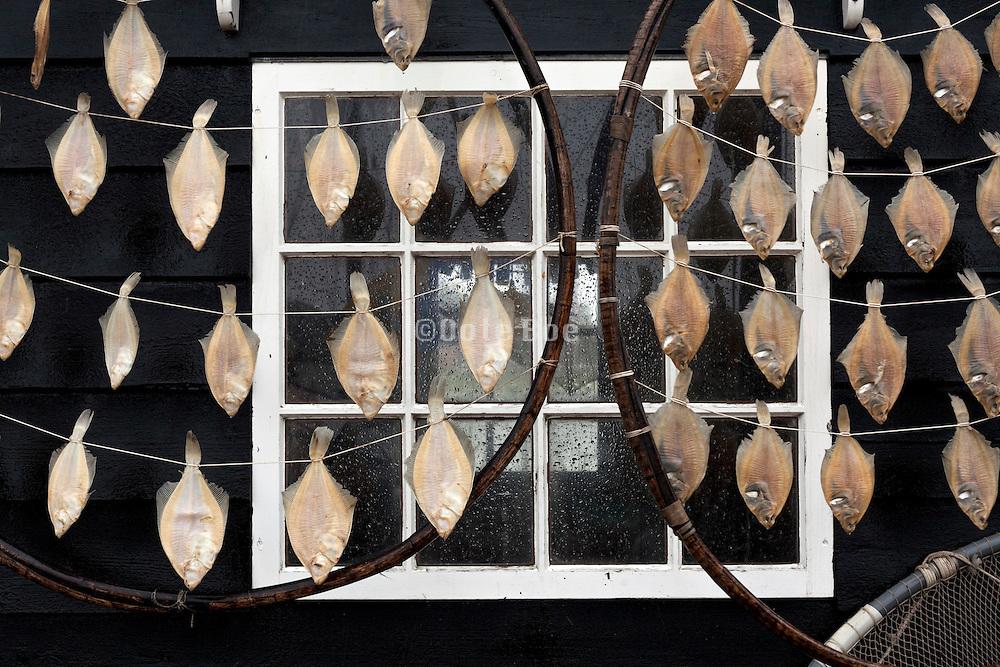 outdoors drying of fish at Zuiderzeemuseum Enkhuizen Netherlands