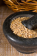 Wheat grain with Pestle and Mortar