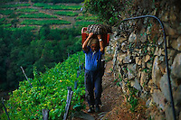 2000, Manarola, Italy --- Man Carrying a Basket --- Image by © Owen Franken/CORBIS