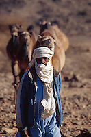 April 2001, Ahaggar, Algeria --- A Tuareg leads dromedaries in the Al Hoggar region of Algeria. --- Image by © Owen Franken/CORBIS