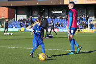 Mascot during the EFL Sky Bet League 1 match between AFC Wimbledon and Fleetwood Town at the Cherry Red Records Stadium, Kingston, England on 8 February 2020.