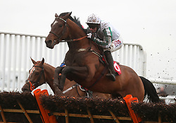 Redicean ridden by Wayne Hutchinson jumps the last to win the 32Red Casino Introductory Juvenile Race during day two of the 32Red Winter Festival at Kempton Park, Sunbury on Thames.