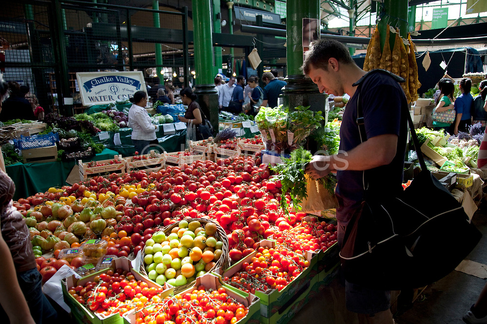Man selects tomatoes from a selection at a fruit and vegetable shop. Borough Market is a thriving Farmers market near London Bridge. Saturday is the busiest day.