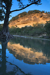 Stock photo of the reflection of a cliff and large cypress tree in the river in the Texas Hill Country