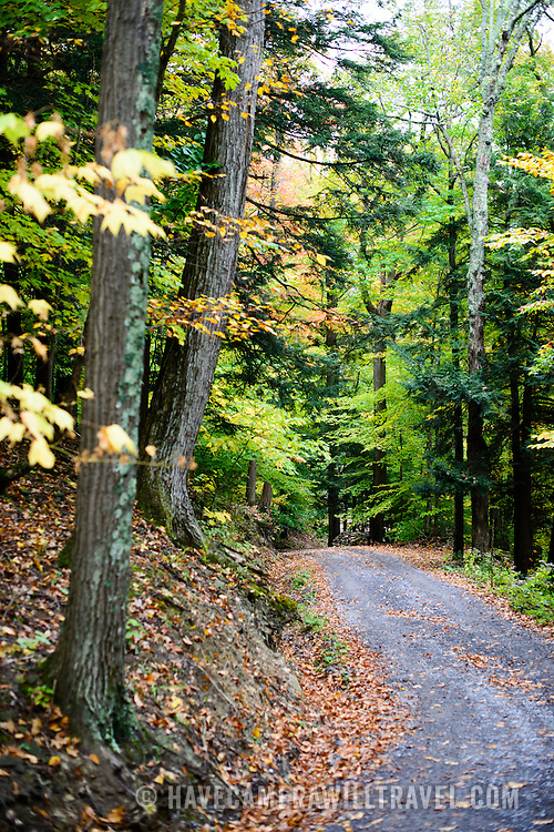 A gravel road winds through the forest with fall leaves in upstate New York.