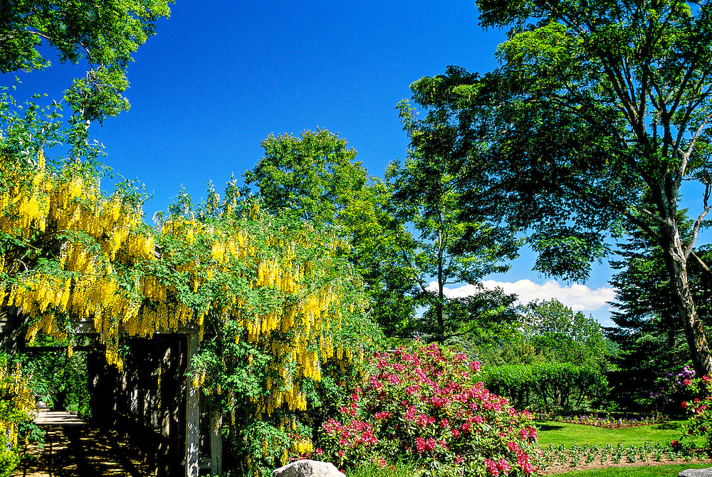 Annapolis Royal historic gardens, Annapolis Royal, Annapolis Valley, Nova Scotia, Canada