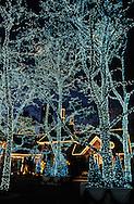 New York. lighting on - tavern on the green - in Central park. /  La - tavern on the green - cette ancienne bergerie transformée en restaurant, se couvre de lumière féerique la nuit venue. New York