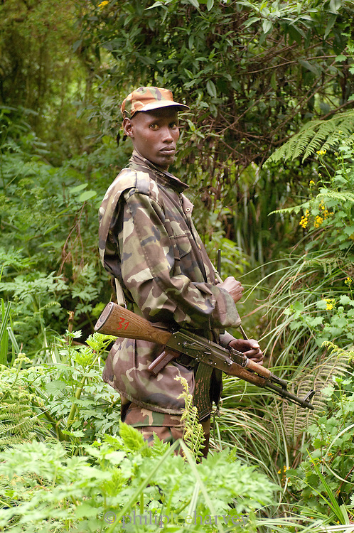 An anti-poaching guard near the Moutain Gorillas in the forest of Parc National Des Volcans, Rwanda