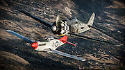 FW 190 replica and North American P-51 Mustang of the Erickson Aircraft Collection