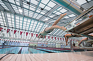 Photo by Mark DiOrio / Colgate University<br /> Colgate competes against Saint Peter's in men's and women's swimming, Jan. 13, 2017 in Hamilton, N.Y.