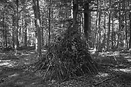 BELGIUM, Brussels. 18/07/2020: Constructions made by children in the Sonian Forest during the Covid-19 pandemic.