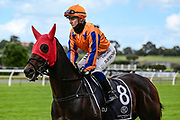 Danielle Johnson on Entriviere prior to Race 7, Haunui Farm King's Plate (G3) 1200.<br /> Vodafone Derby Day at Ellerslie Race Course, Auckland on Sunday 7th March 2021 during lockdown level 2.<br /> Copyright photo: Alan Lee / www.photosport.nz