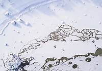 Abstract aerial view of the frozen sea of Muraste in Estonia.