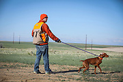 SHOT 5/9/20 8:42:03 AM - Various pointing breeds compete in the Vizsla Club of Colorado Licensed Hunt Test Premium at the Rocky Mountain Sporting Dog Club Grounds in Keenesburg, Co. (Photo by Marc Piscotty / © 2020)