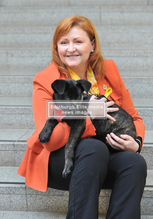 Pictured: MSP Emma Harper with 14 week old Akita mastiff cross Kai.<br /> <br /> An MSP has launched a bid to have so called puppy farms in Scotland banned.<br /> <br /> © Dave Johnston/ EEm