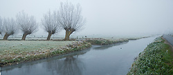's-Graveland Kortenhoef winter, rijp en sneeuw Kortenhoef, Wijdemeren Winter, koud, cold snow, sneeuw, winter, cold, wit, white