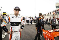 November 26, 2017 - Abu Dhabi, United Arab Emirates - Motorsports: FIA Formula One World Championship 2017, Grand Prix of Abu Dhabi, .#2 Stoffel Vandoorne (BEL, McLaren Honda) (Credit Image: © Hoch Zwei via ZUMA Wire)