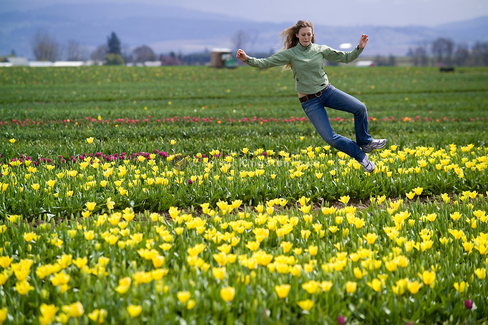 WOODBURN, OR - A woman takes advantage of a clear spring day in Oregon to play and click her heels in the field of the annual Woodburn tulip festival.  The event draws people from Portland and tourists from afar to admire the flowers, enjoy the festivities, and welcome the beauty of spring in the Pacific Northwest. Tulips, of the genus Tulipa, are perennial bulbous flowering plants of the Liliaceae family. (Model Released)