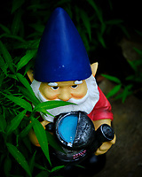 Troll in the Garden. Image taken with a Fuji X-H1 camera and 80 mm f/2.8 macro lens