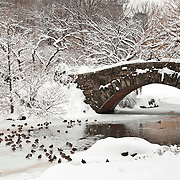 Gapstow Bridge in Central Park, New York City after a snowstorm