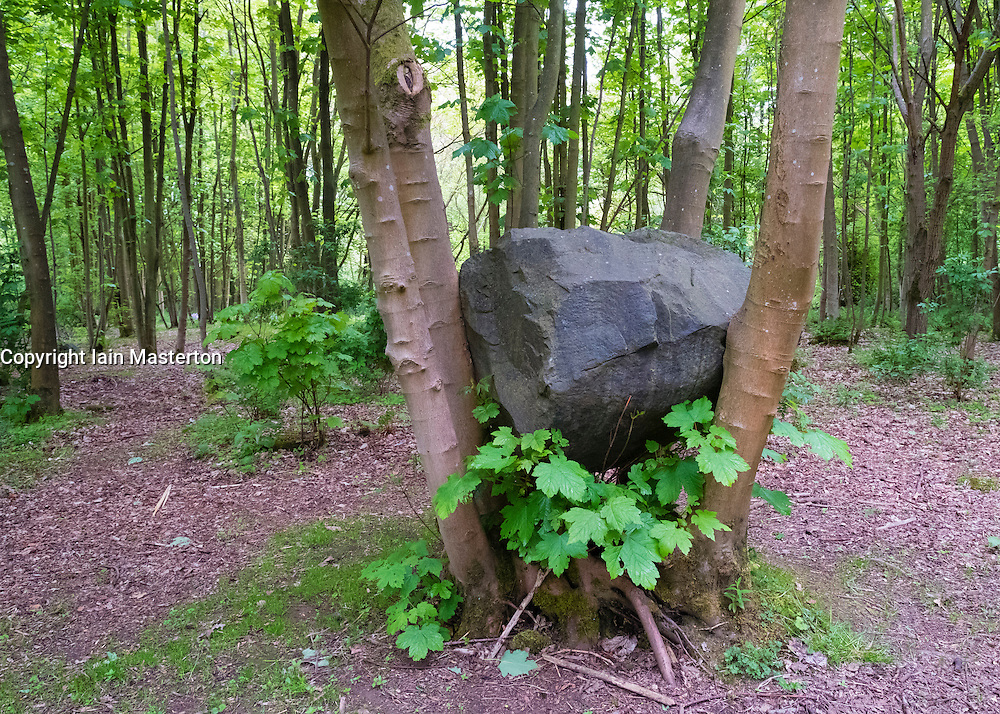 outdoor sculpture  Stone Coppice by Andy Goldsworthy at Jupiter Artland outside Edinburgh , Scotland , united Kingdom; editorial use only