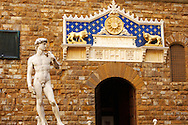 Palazzio Vecchio - Statue of David and Front door - Piazza Della Signora - Florence  - Italy .<br /> <br /> Visit our ITALY PHOTO COLLECTION for more   photos of Italy to download or buy as prints https://funkystock.photoshelter.com/gallery-collection/2b-Pictures-Images-of-Italy-Photos-of-Italian-Historic-Landmark-Sites/C0000qxA2zGFjd_k<br /> .<br /> <br /> Visit our EARLY MODERN ERA HISTORICAL PLACES PHOTO COLLECTIONS for more photos to buy as wall art prints https://funkystock.photoshelter.com/gallery-collection/Modern-Era-Historic-Places-Art-Artefact-Antiquities-Picture-Images-of/C00002pOjgcLacqI