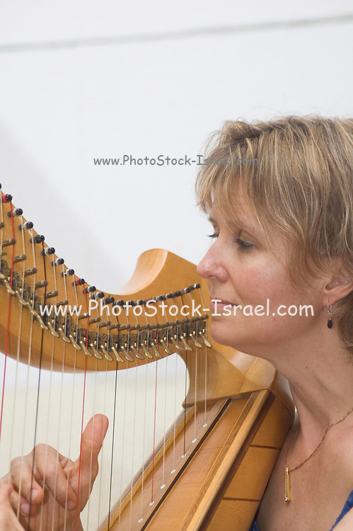 Sunita Staneslow playing a Celtic harp Jacob's Ladder Festival, Israel May 2005