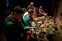 """Kids play with Mandrake plants at the """"Harry Potter"""" exhibition at Discovery Times in New York. ..Photo by Robert Caplin."""