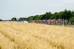 Peloton during 1st Stage of 25th Tour de Slovenie 2018 cycling race between Lendava and Murska Sobota (159 km), on June 13, 2018 in  Slovenia. Photo by Vid Ponikvar / Sportida