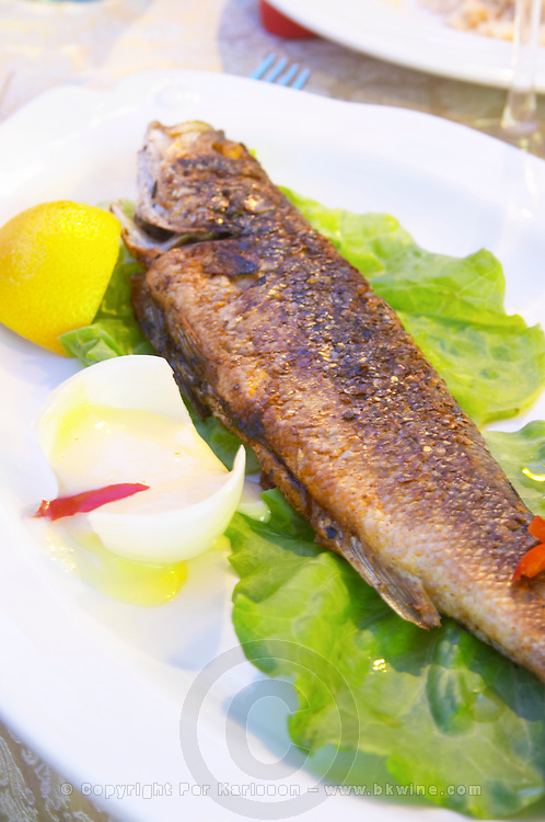 Fried fish trout on lettuce with mayonnaise sauce in an onion. Tirana capital. Albania, Balkan, Europe.