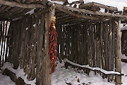 Wooden shelter with chilis in snow