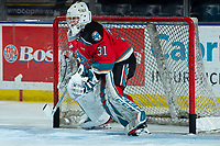 KELOWNA, BC - MARCH 11: Cole Schwebius #31 of the Kelowna Rockets warms up in net against the Victoria Royals at Prospera Place on March 11, 2020 in Kelowna, Canada. (Photo by Marissa Baecker/Shoot the Breeze)