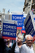 On 2nd anniversary of Brexit , June 23rd 2018, around 100,000 people marched in Central London demanding a People's Vote on the final Brexit deal. A group of Tories against Brexit.