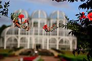 Curitiba_PR, Brasil...O Jardim Botanico de Curitiba ou Jardim Botanico Francisca Maria Garfunkel Richbieter em Curitiba, Parana, projeto arquitetonico de Abrao Assad...The Botanical Garden (Botanical Garden Francisca Maria Garfunkel Richbieter) is one of the main sights of the city of Curitiba, Parana, Its was designed by Abrao Assad...Foto: BRUNO MAGALHAES / NITRO