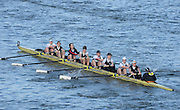 London, United Kingdom. Upper Thames RC. A Crew, from Barnes Rail Bridge ridge  2014 Women's Head of the River Race. Chiswick to Putney, River Thames.  Saturday  15/03/2014    [Mandatory Credit; Peter Spurrier/Intersport-images]
