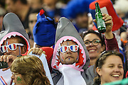 French rugby fan during the Rugby World Cup Pool D match between France and Ireland at Millenium Stadium, Cardiff, Wales on 11 October 2015. Photo by Shane Healey.