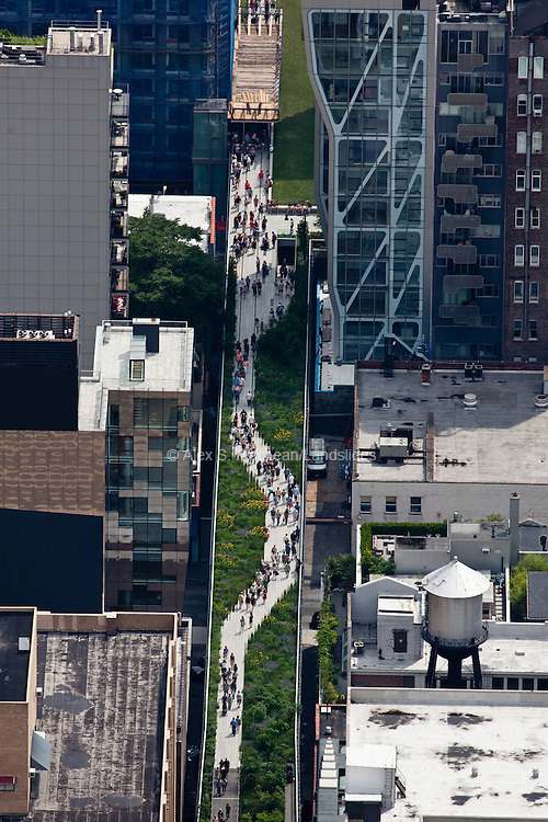 The High Line is a perfect example of urban renewal and repurposing -- once an abandoned, overgrown rail line, the park is now teeming with pedestrians and natural vegetation