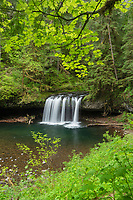 Upper Butte Creek Falls Cascade Range, Oregon