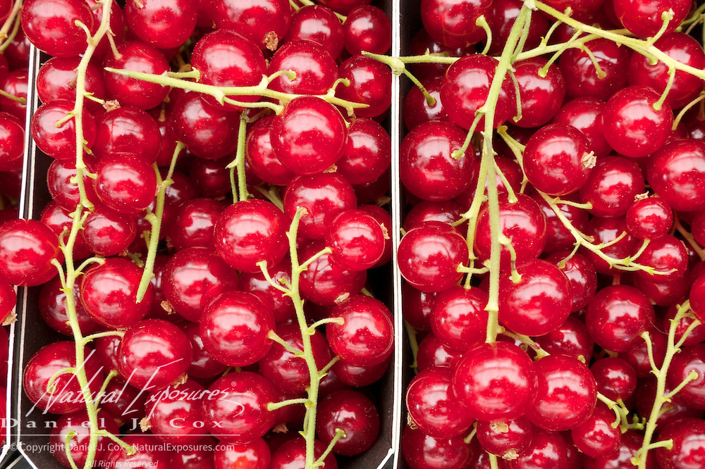 Red currants, for sale at the Galway Farmers Market, Galway, Ireland.