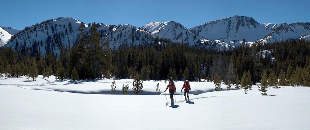 Backcountry skiers in meadow, Wallowa Mountains, Oregon.