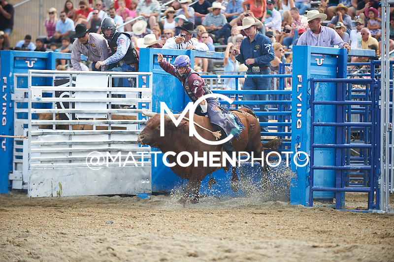 Bull rider Kanin Asay of Powell, WY rides 88 Sunburn at the Rancho Mission Viejo Rodeo in San Juan Capistrano, CA.  <br /> <br /> <br /> UNEDITED LOW-RES PREVIEW<br /> <br /> <br /> File shown may be an unedited low resolution version used as a proof only. All prints are 100% guaranteed for quality. Sizes 8x10+ come with a version for personal social media. I am currently not selling downloads for commercial/brand use.