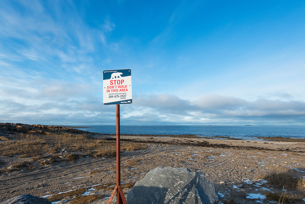 A sign warns people to stay out of this area, after a polar bear was spotted here the day before.  Residents in the town of Churchill have learned to live safely while in polar bear territory, and attacks are rare. Churchill, a remote town in the far north of Manitoba, Canada.  The town has a population of roughly 800 people and relies heavily on Arctic tourism dollars. Travelers from the world over come to Churchill to see polar bears and beluga whales, as well as other wildlife and aurora borealis.  The town is on Hudson Bay, and the area is home to the world's largest concentrations of polar bears.  During October and November the bears amass here as they wait for the sea ice to form so they may venture out to the sea to hunt seals.  Photo © William Drumm, 2013.