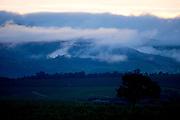 Sao Roque de Minas_MG, Brasil...Parque Nacional da Serra da Canastra em Sao Roque de MInas, Minas Gerais...Serra da Canastra National Park in Sao Roque de Minas, Minas Gerais...Foto: JOAO MARCOS ROSA / NITRO...