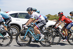 January 19, 2019 - Strathalbyn, AUSTRALIA - Slovakian Peter Sagan of Bora-Hansgrohe pictured in action during the fifth stage of the 'Tour Down Under' cycling race, 149,5 km Glenelg to Strathalbyn, Australia, Saturday 19 January 2019. This years edition of the race is taking place from January 15th to January 20st...BELGA PHOTO YUZURU SUNADA FRANCE OUT. (Credit Image: © Yuzuru Sunada/Belga via ZUMA Press)