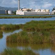 Kanaha Pond State Wildlife Sanctuary with Sewage Treatment Plant in Background, Maui, Hawaii