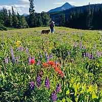 A hiker and her dog walk through a meadow near Big Sky, Montana.