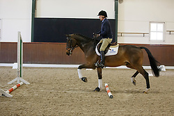 Morris George, (USA), <br /> There are no styles, there is just good riding<br /> Global Dressage Forum<br /> Academy Bartels - Hooge Mierden 2015<br /> © Hippo Foto - Dirk Caremans<br /> 27/10/15