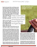 Orianne Society Indigo Magazine article Page 6