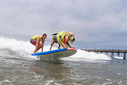 July 29, 2017 - Imperial Beach, CA, US - Surfdog returns to Imperial Beach for the twelfth  year...Bamboo and Bobby surfing. (Credit Image: © Daren Fentiman via ZUMA Wire)